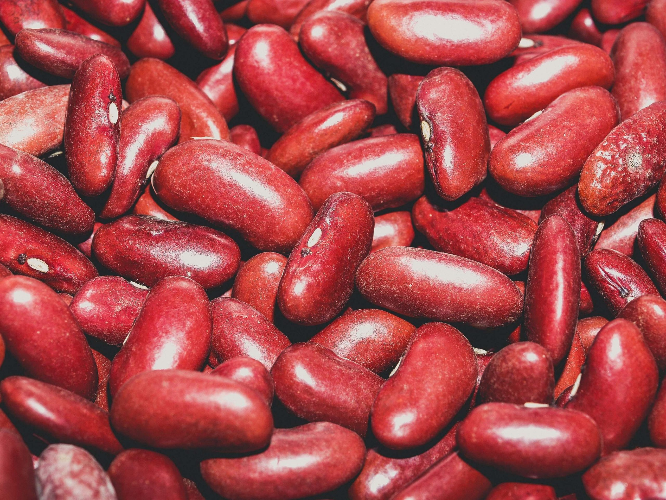 A bowl of Beans as High Protein Foods
